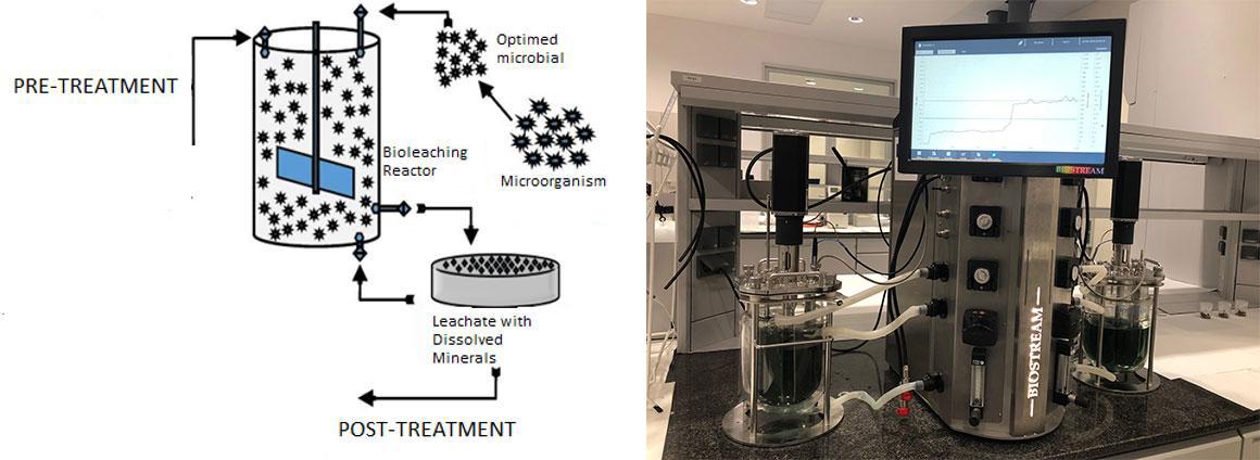 Etapas de proceso y biorreactor en los laboratorios de CETIM